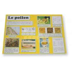 """PLANCHE D'INFORMATION """"LE POLLEN"""""""