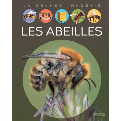 LIVRE - LES ABEILLES - Fleurus / S. Boccador