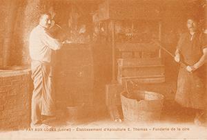 1905 - Depart Thomas Apiculture